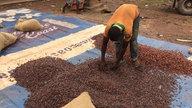 Kind beim Abfüllen von Kakaobohnen nach dem Trocknen